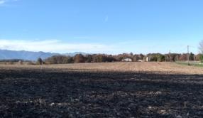 Porcherie industrielle d'Ossun (65) : nos associations dénoncent un projet agricole à rebours des attentes des consommateurs