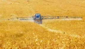 Pesticides dans les cours d'eau : une réglementation locale en régression
